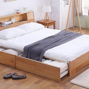 Giường Ngủ Người Lớn GT155
